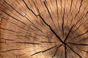 Kotly na drevo majú mnoho výhod